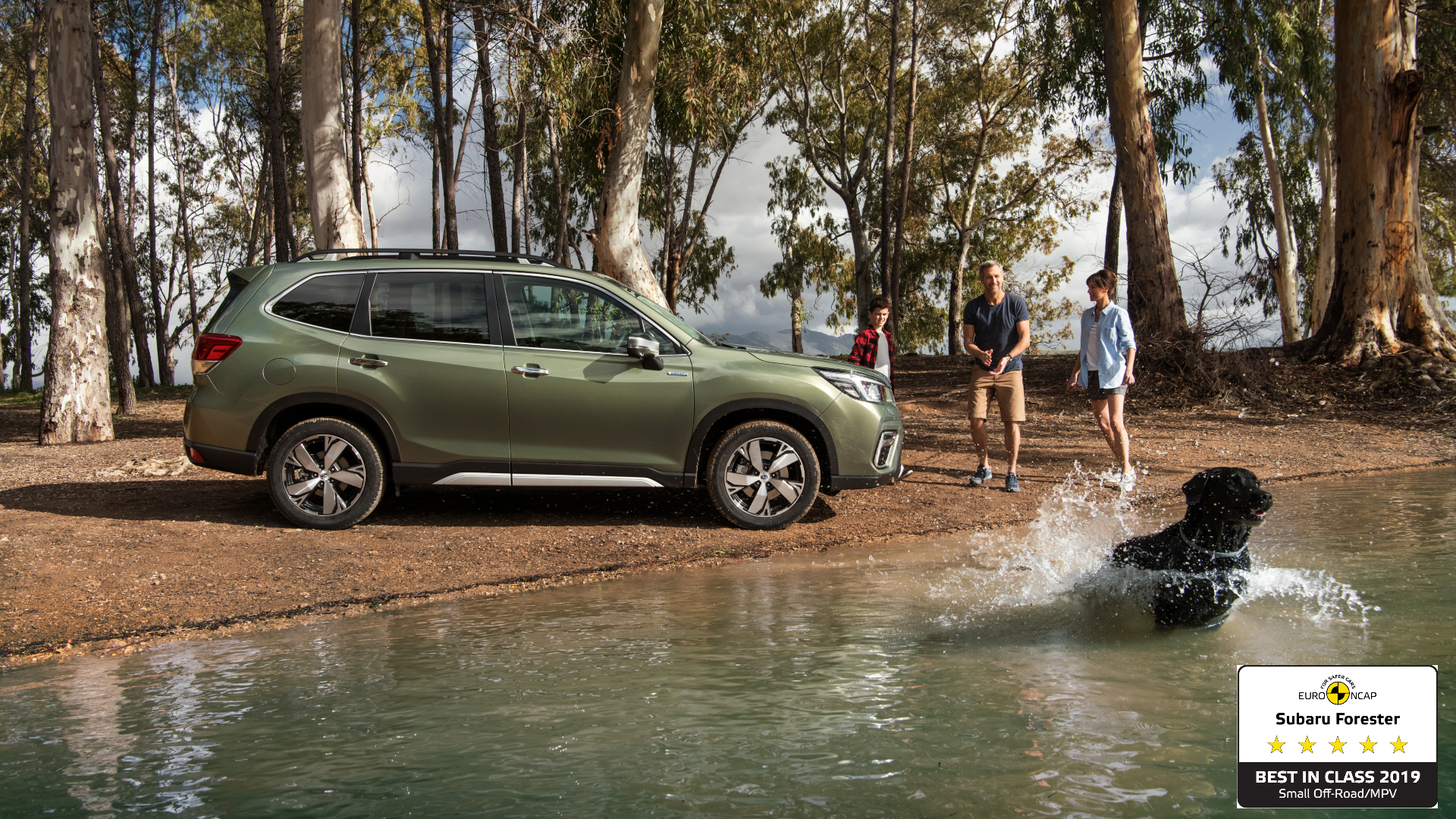 All-new Subaru Forester e-BOXER awarded Euro NCAP's Best in Class 2019